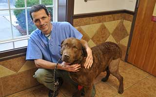 Dr. Leahy of Canine Knee Surgery